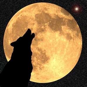 wolf-moon1