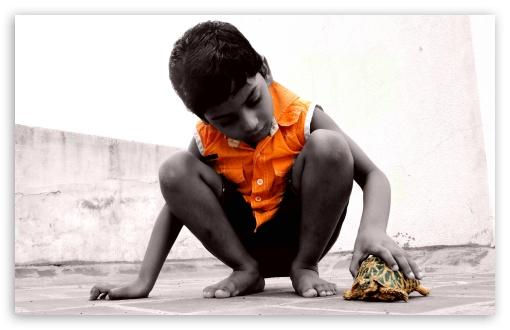 child__turtle-t2